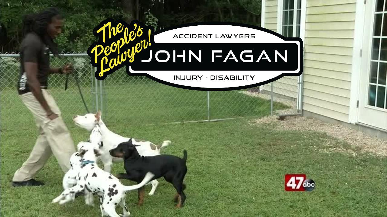 dogbiteprevention