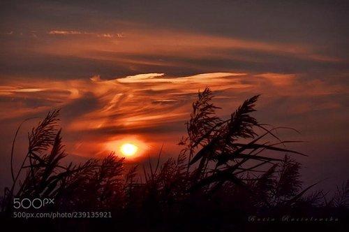 Nature travel image Photo photography