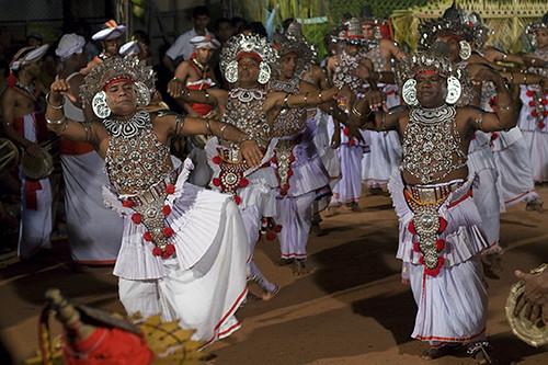 Kohomba Kankariya Flickr Photo Sharing