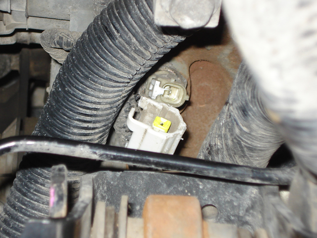 Replace Oil Pan 2000 Ford Mustang