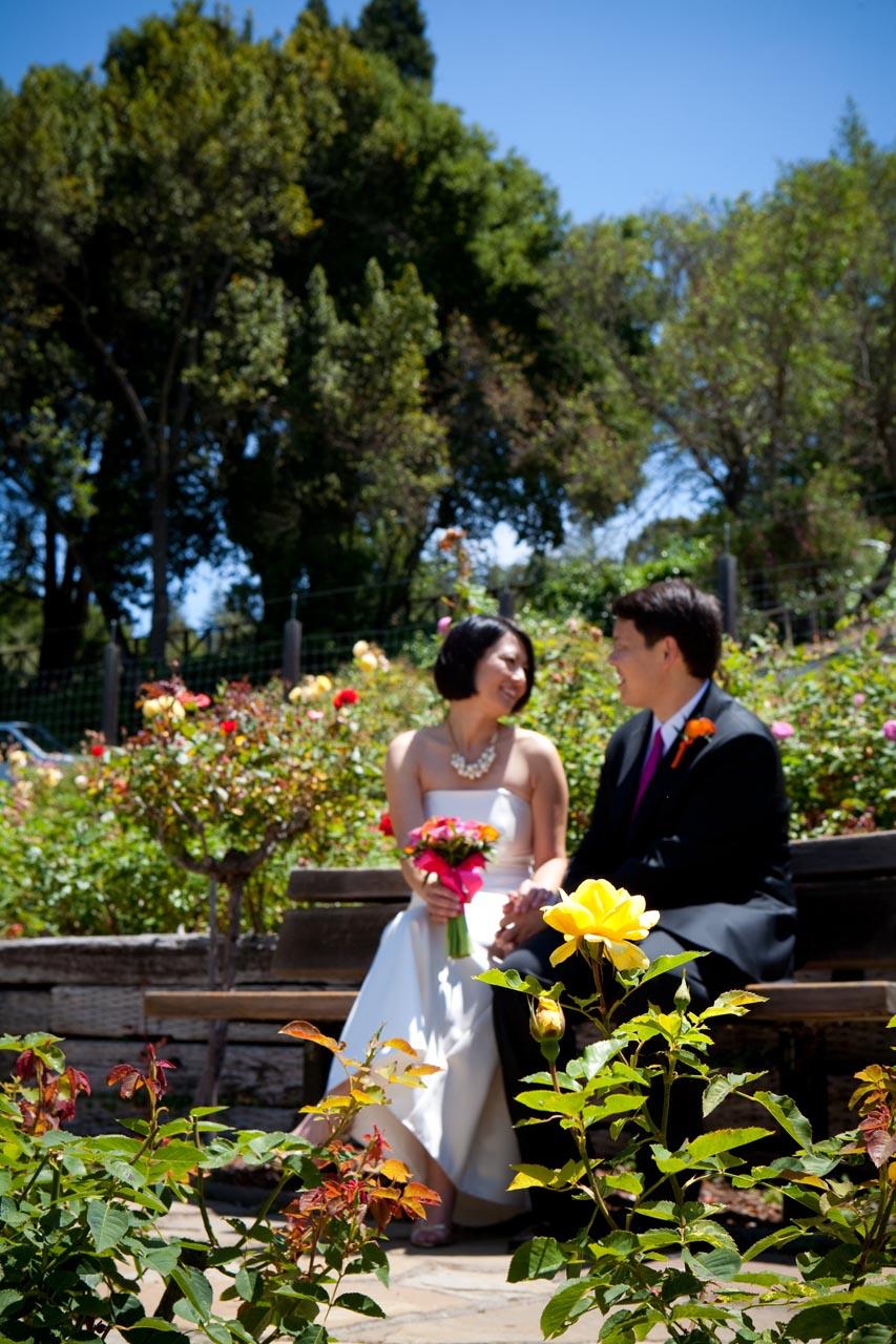 berkeley rose garden wedding - Berkeley Rose Garden