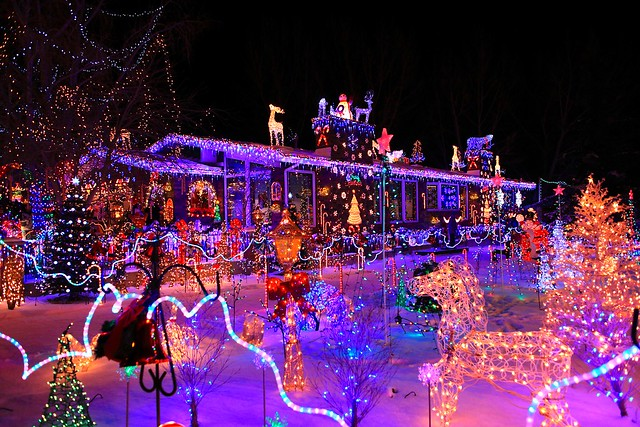 Christmas Light Display Edmonton
