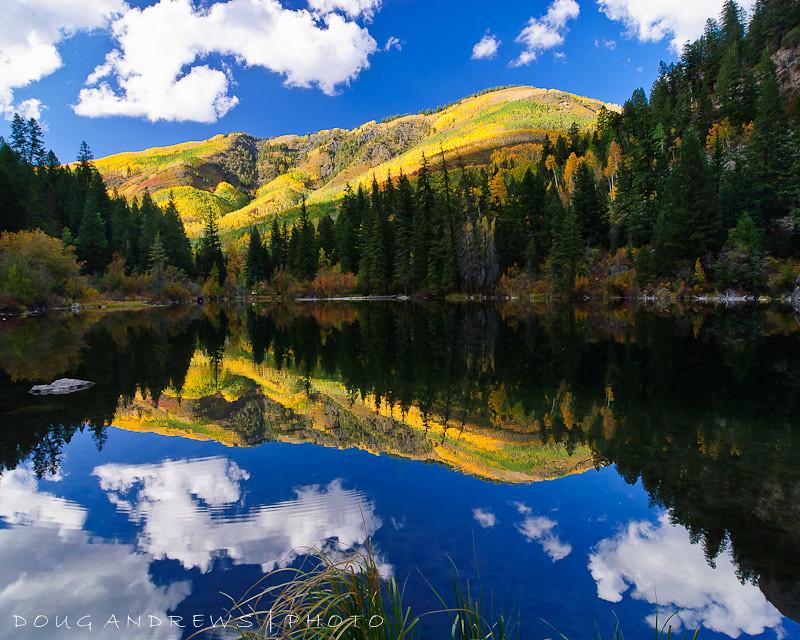 Lizzerds Colorado River