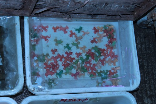 There is a lot to see on the Chinese goldfish market ...