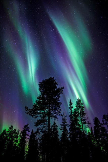 Colours Northern Lights