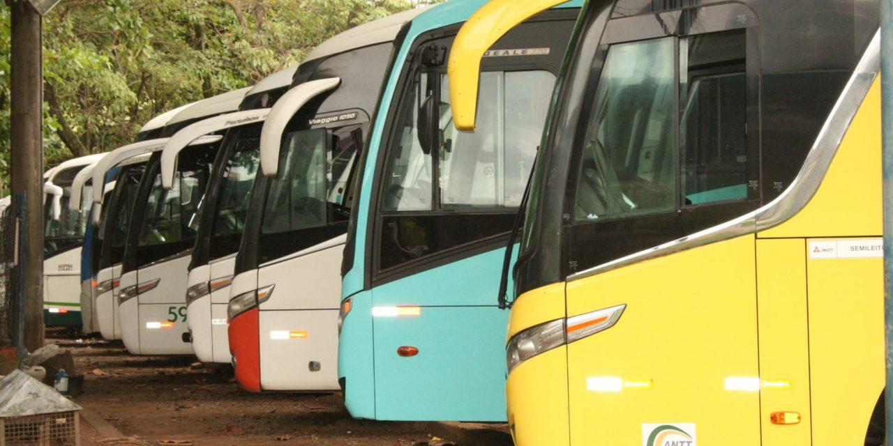 Governo autoriza retorno do transporte intermunicipal em cidades sem novos  registros de Covid-19 - Farol News