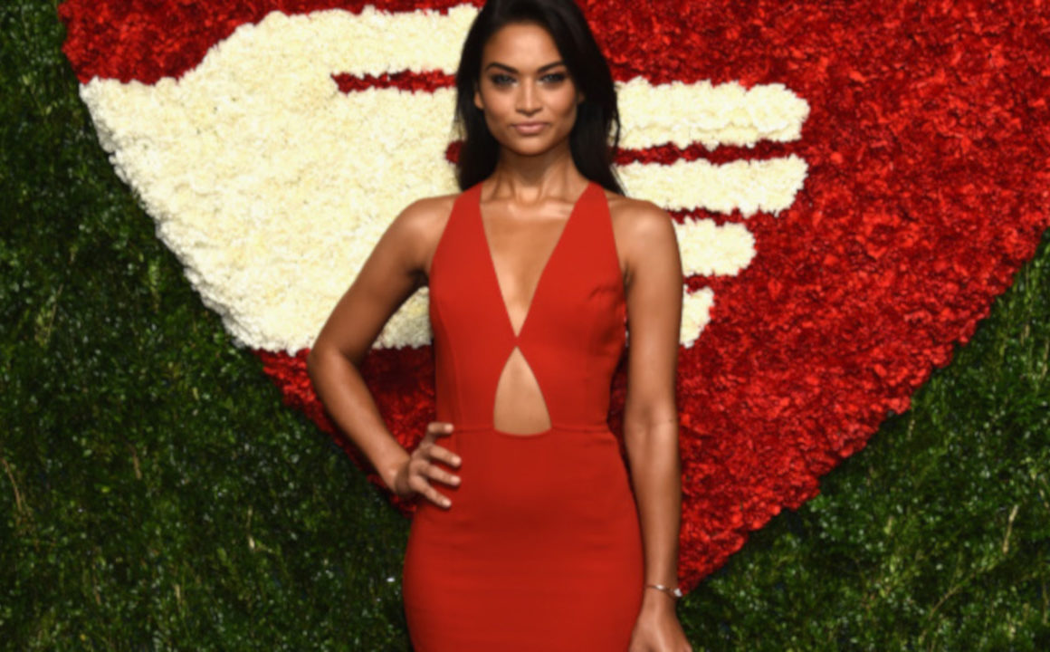 Get-In-The-Holiday-Spirit-With-These-Red-Hot-Celeb-Looks-Shanina-Shaik
