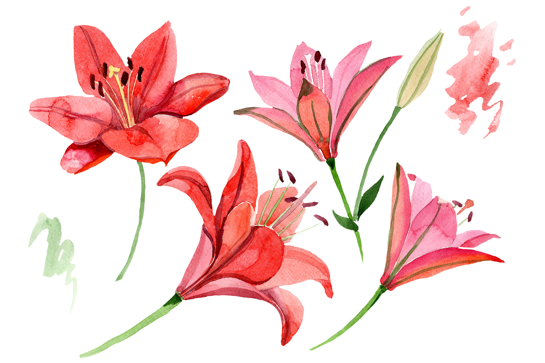 Printables Lily Coloring
