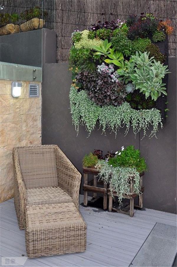 Wall Mounted Herb Garden
