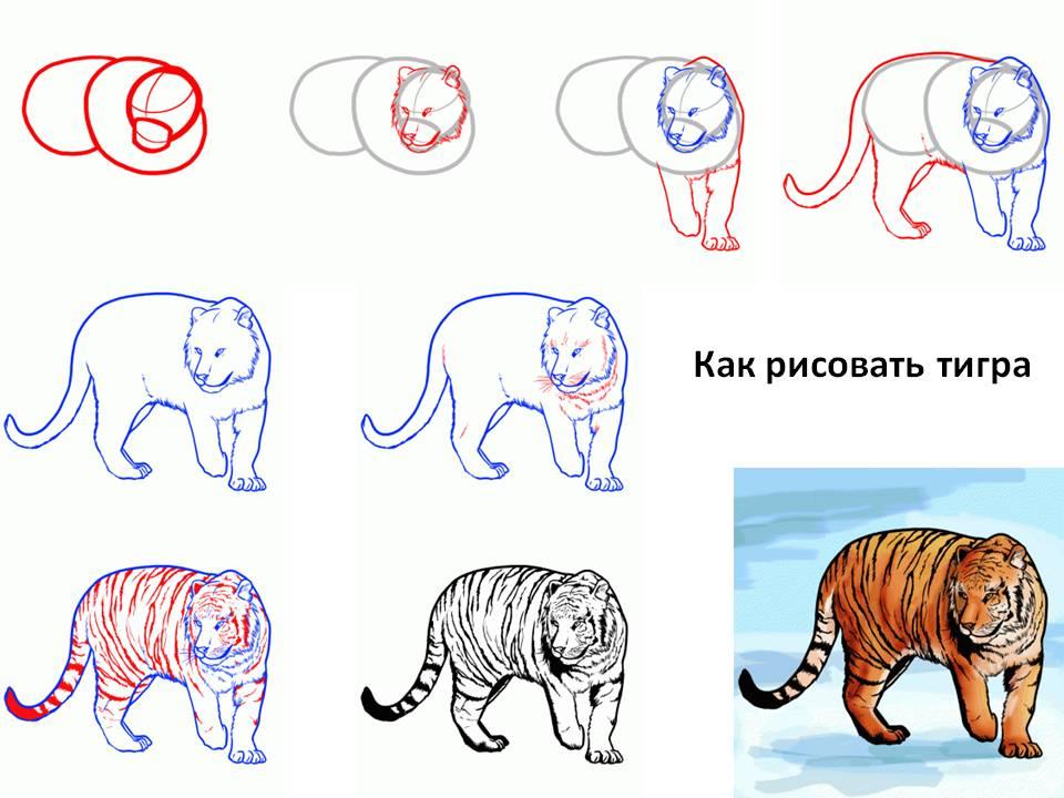 Рисуем Тигра 2022 поэтапно