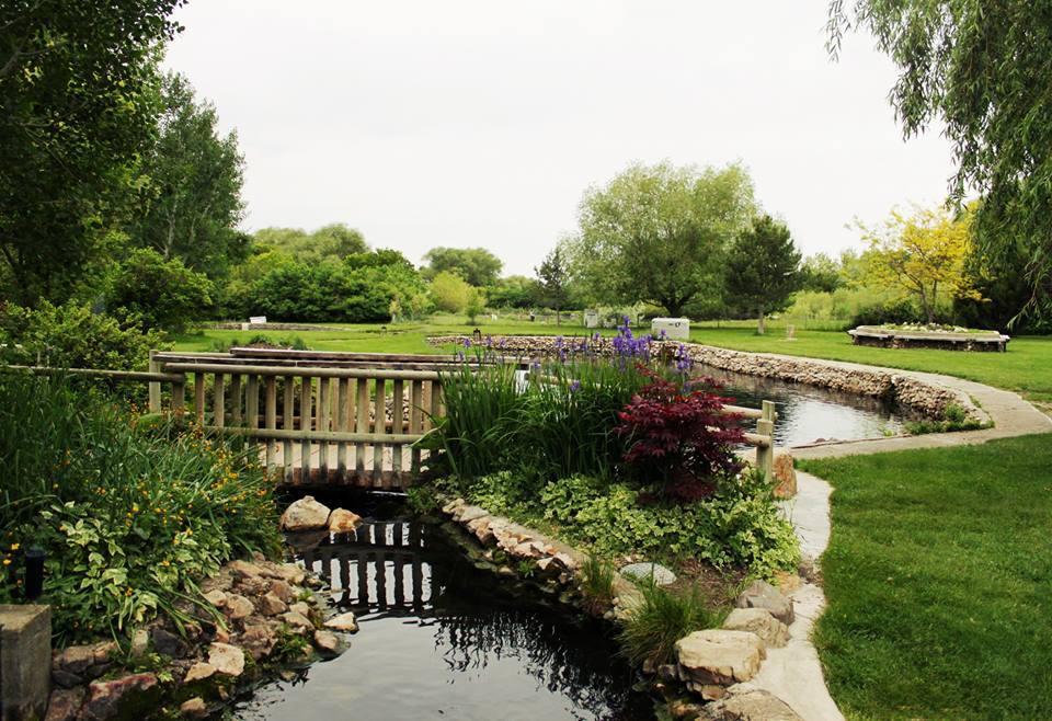 Stocking Farm Pond