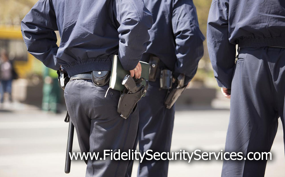 Armed Security Requirements