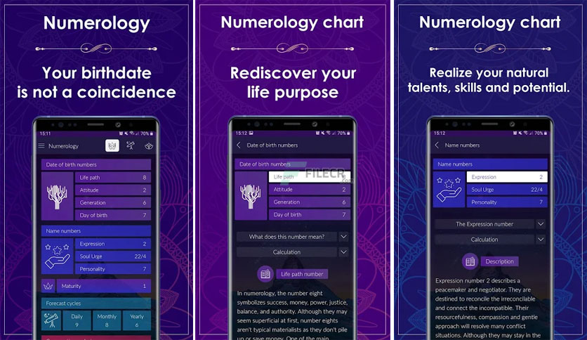 numerology-rediscover-your-life-purpose-free-download-01