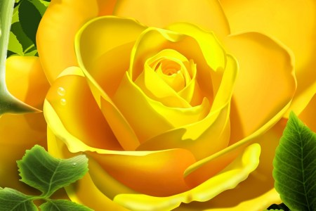 3D Yellow Rose Wallpaper 3D Models 3D Wallpapers in jpg format for     1600 1200      1280 800      1680 1050