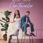 CAM TAVANLAR | TAVANE DE STICLA Episodul 2