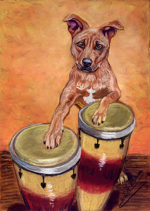 Bongo On The Bongos Painting by Stephanie Grimes