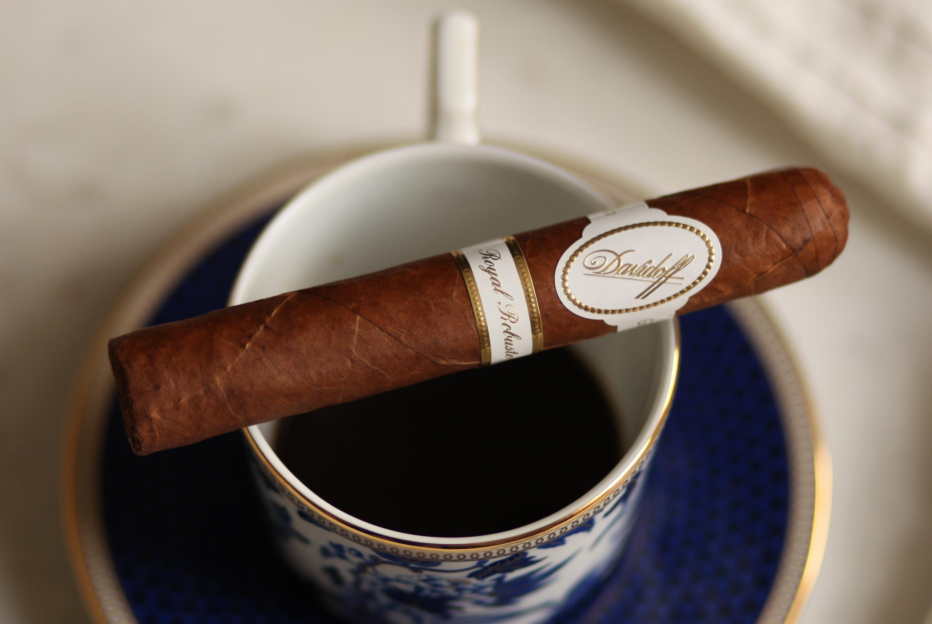 Davidoff Royal Robusto Review - Fine Tobacco NYC