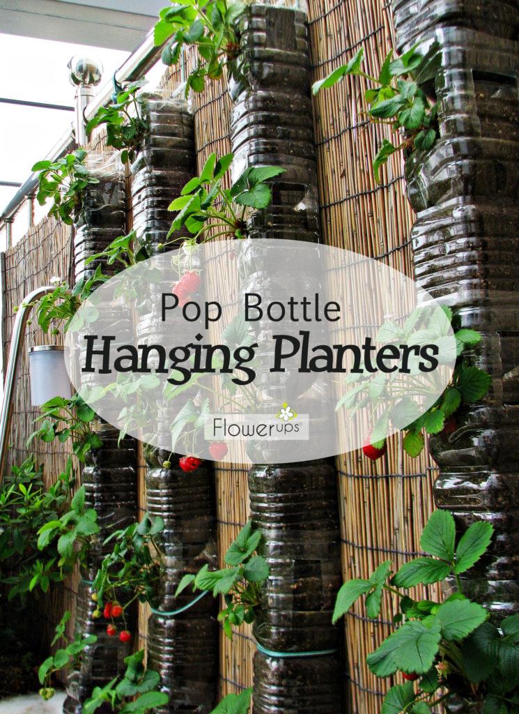 Wall Planters Plastic