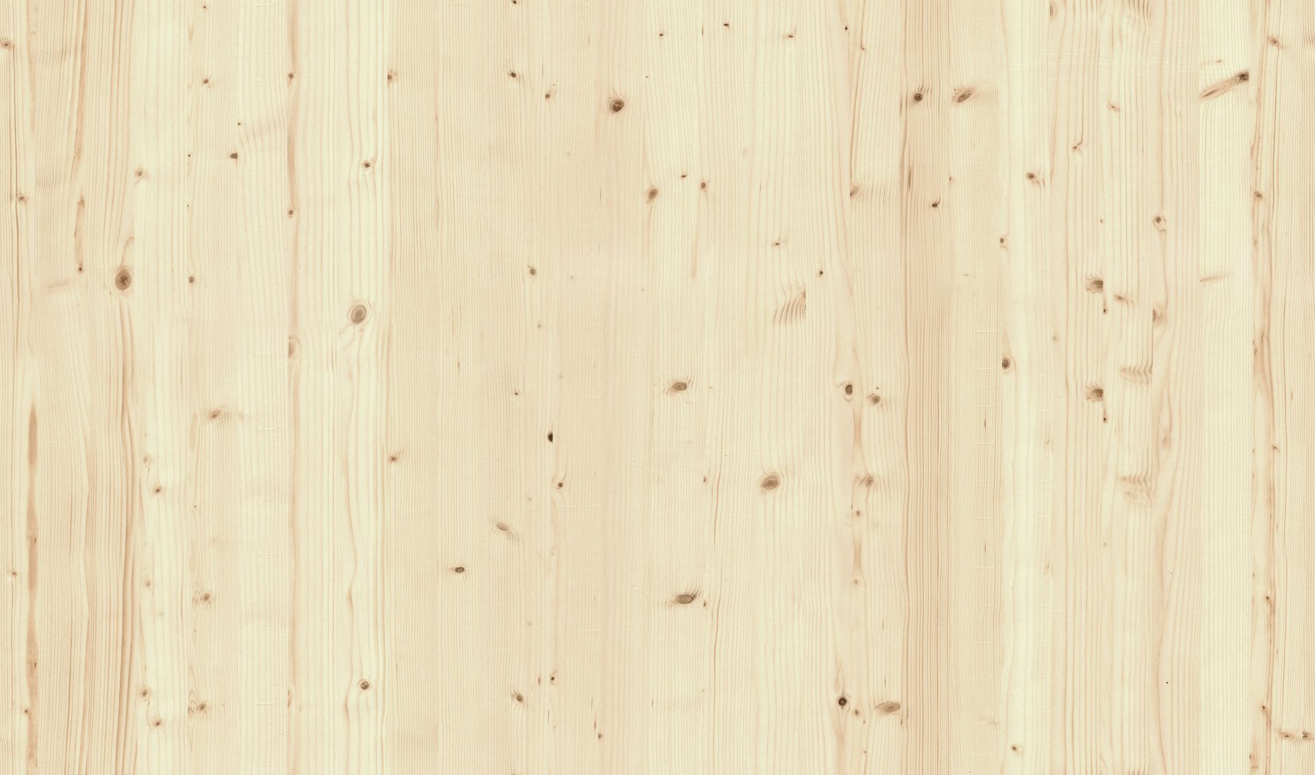 Spruce Wood Flyingarchitecture