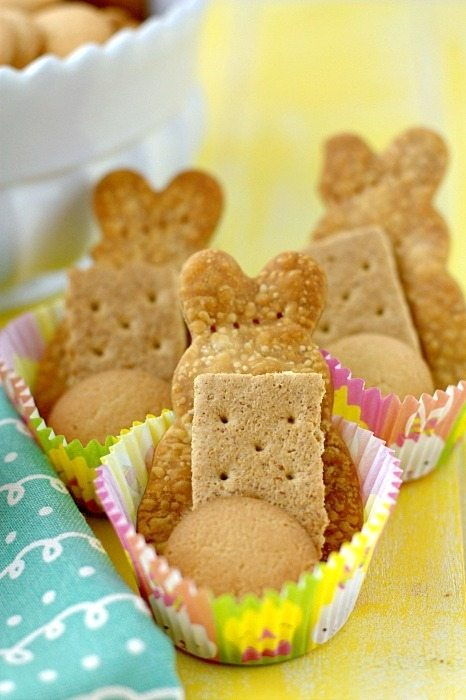 Close up picture of the dippers for theCheesecake Dip.