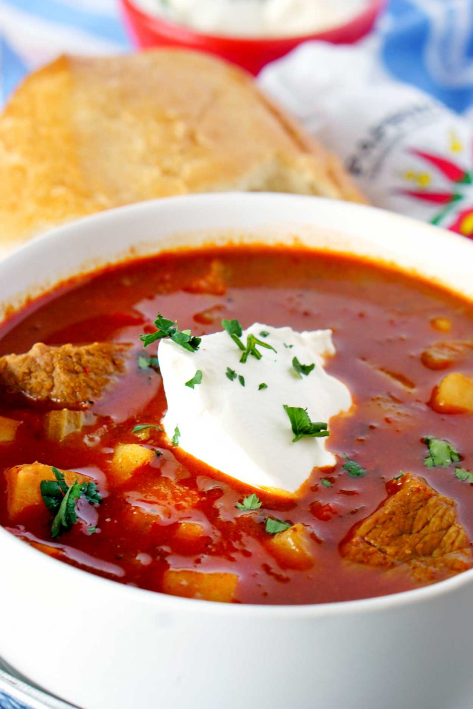 Close up picture of Hungarian Goulash
