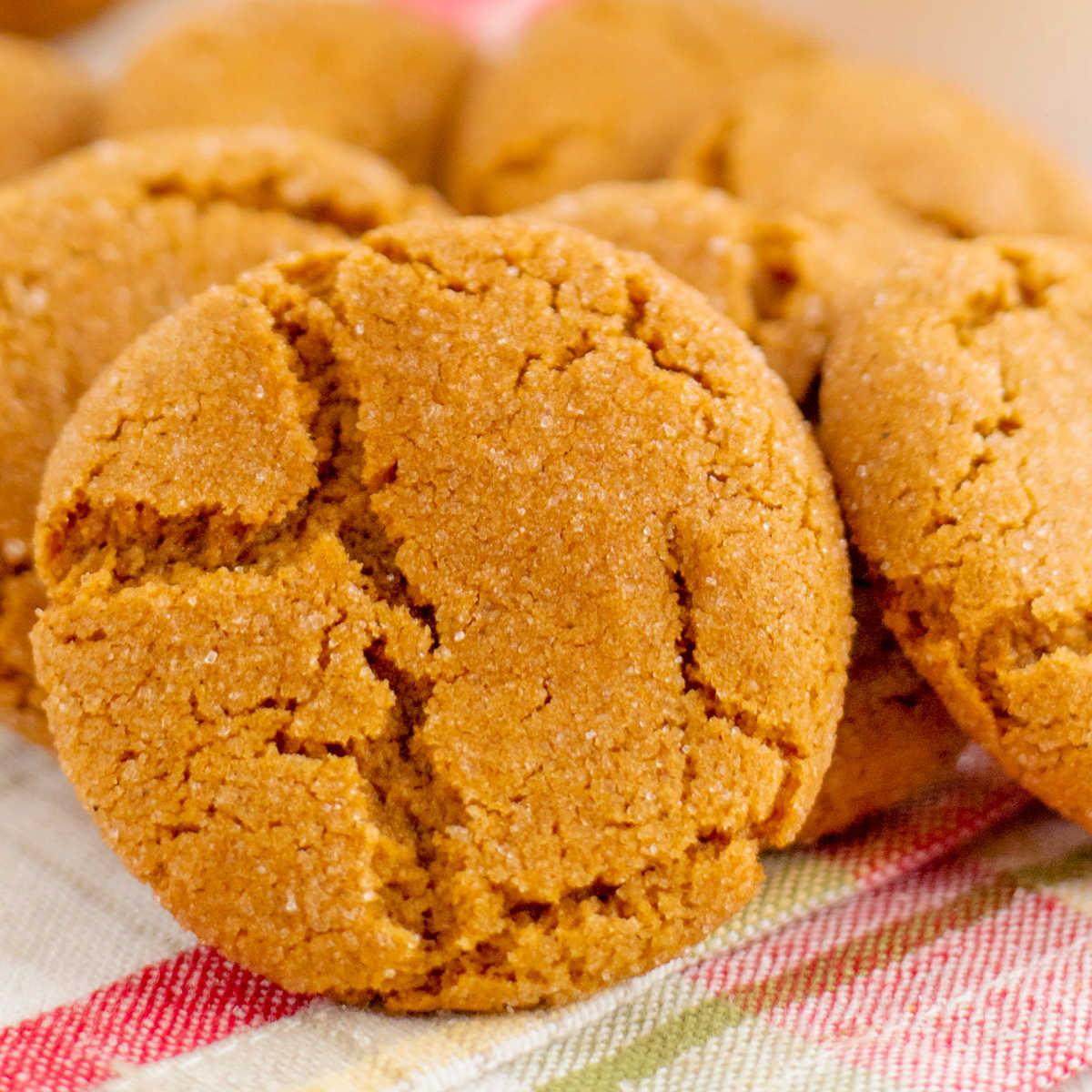 A close up picture of a finished gingersnap.