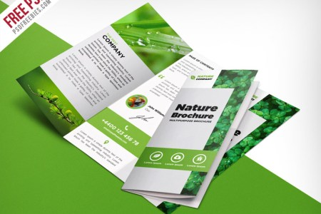 69 Premium and Free PSD Tri Fold   Bi Fold Brochures Templates for     Nature Tri fold Brochure Template Free PSD  Download