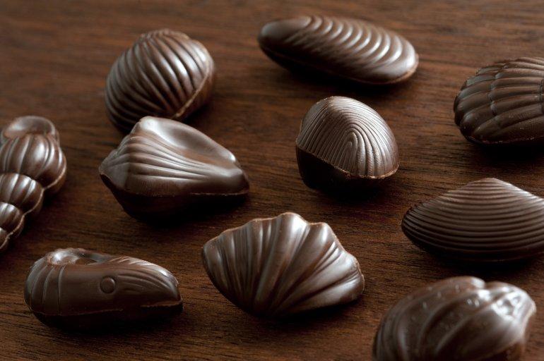 Shell Shaped Dark Chocolates Free Stock Image