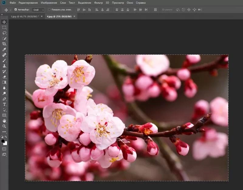 - Ett av de mest populära och krävda programmen för att arbeta med bilder. Det ger många olika möjligheter, varav de flesta är ibland svåra att räkna ut. Till exempel vet inte alla hur i Photoshop Sätt i en bild på bilden.