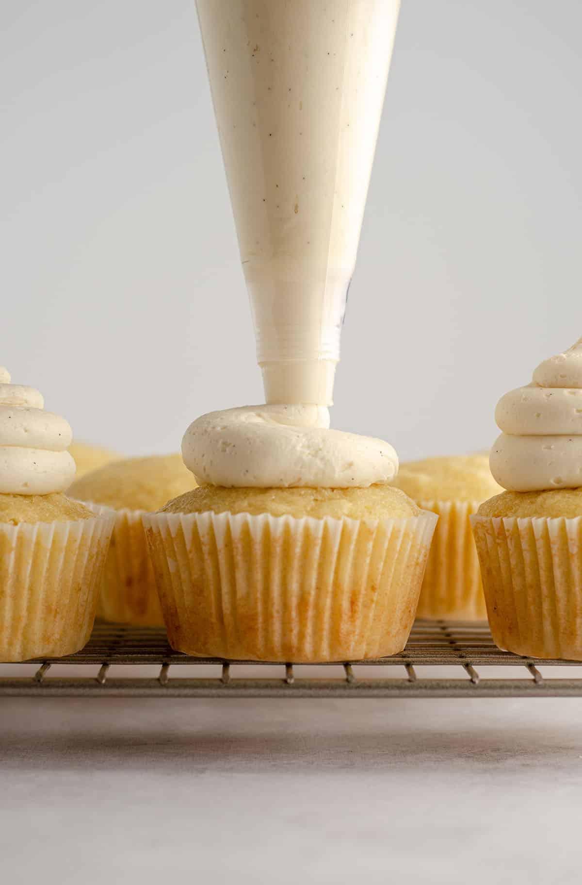 a piping bag piping vanilla buttercream onto the top of a vanilla bean cupcake