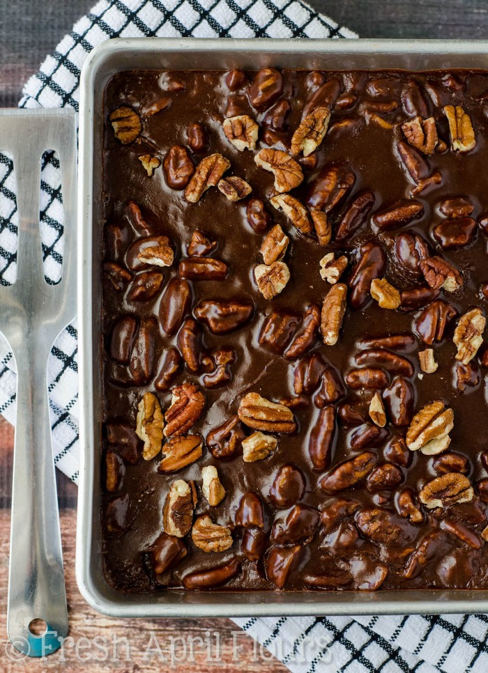Texas Sheet Cake: Incredibly moist and chocolatey sheet cake topped with a fudgy pecan icing.
