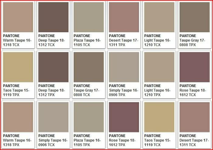 2017 Color Grey Pantone Dark