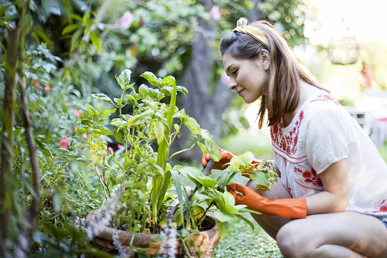 How to Plan a Farm and Garden to Feed a Family