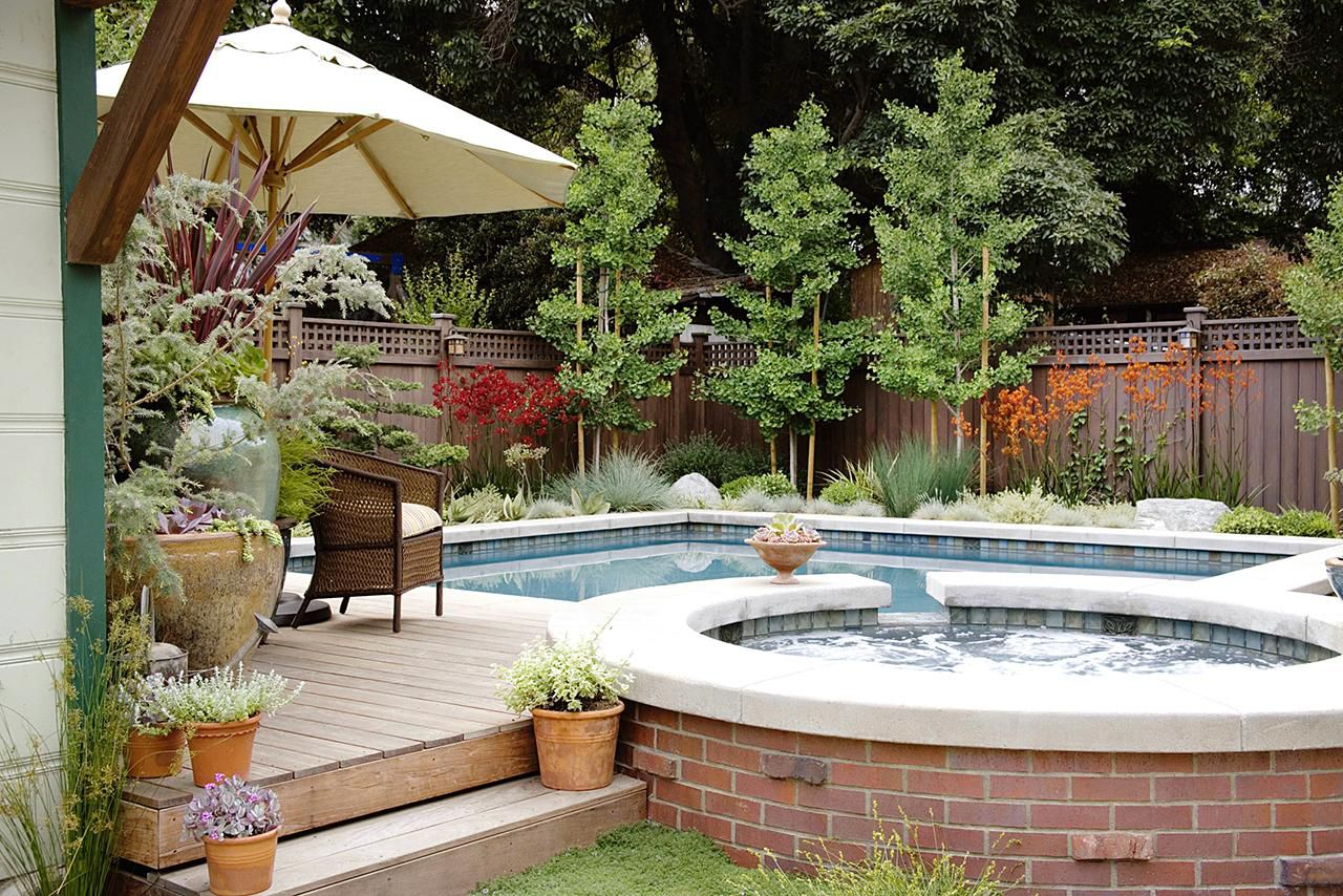 The Best Plants For Pool Landscaping