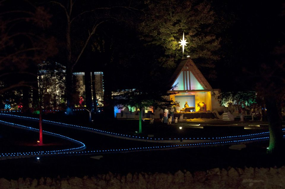 Riverbanks Lights Zoo