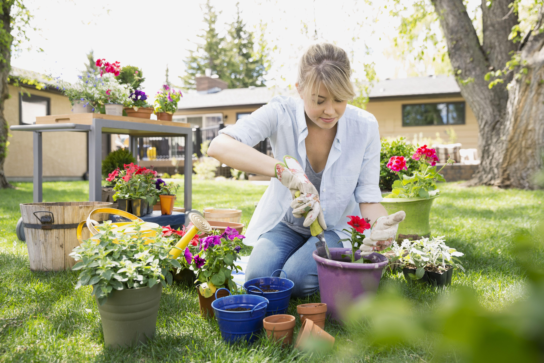 Garden Calendar - Things To Do Every Season