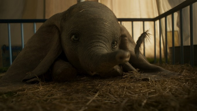 Dumbo with feather