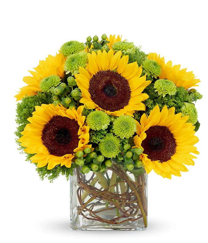 Sunflower Surprise at From You Flowers Sunflower bouquet by a florist with green poms