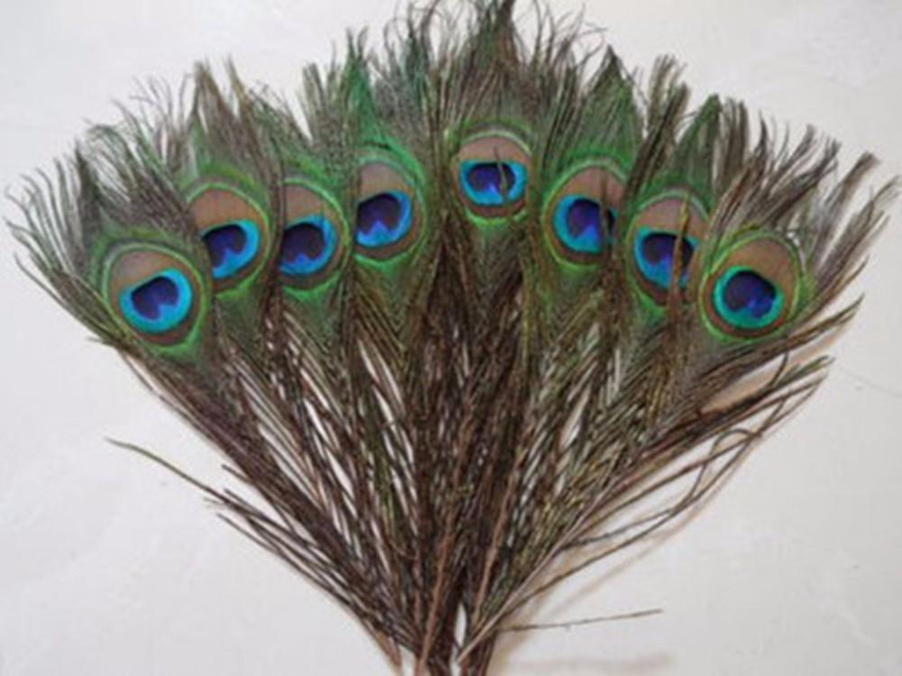 40pcs beaucoup réel naturel paon Yeux plumes de la queue 8-12 pouces MT