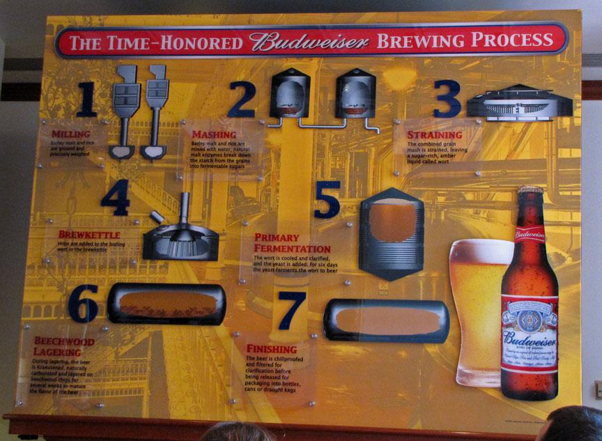 Beer Light Natural