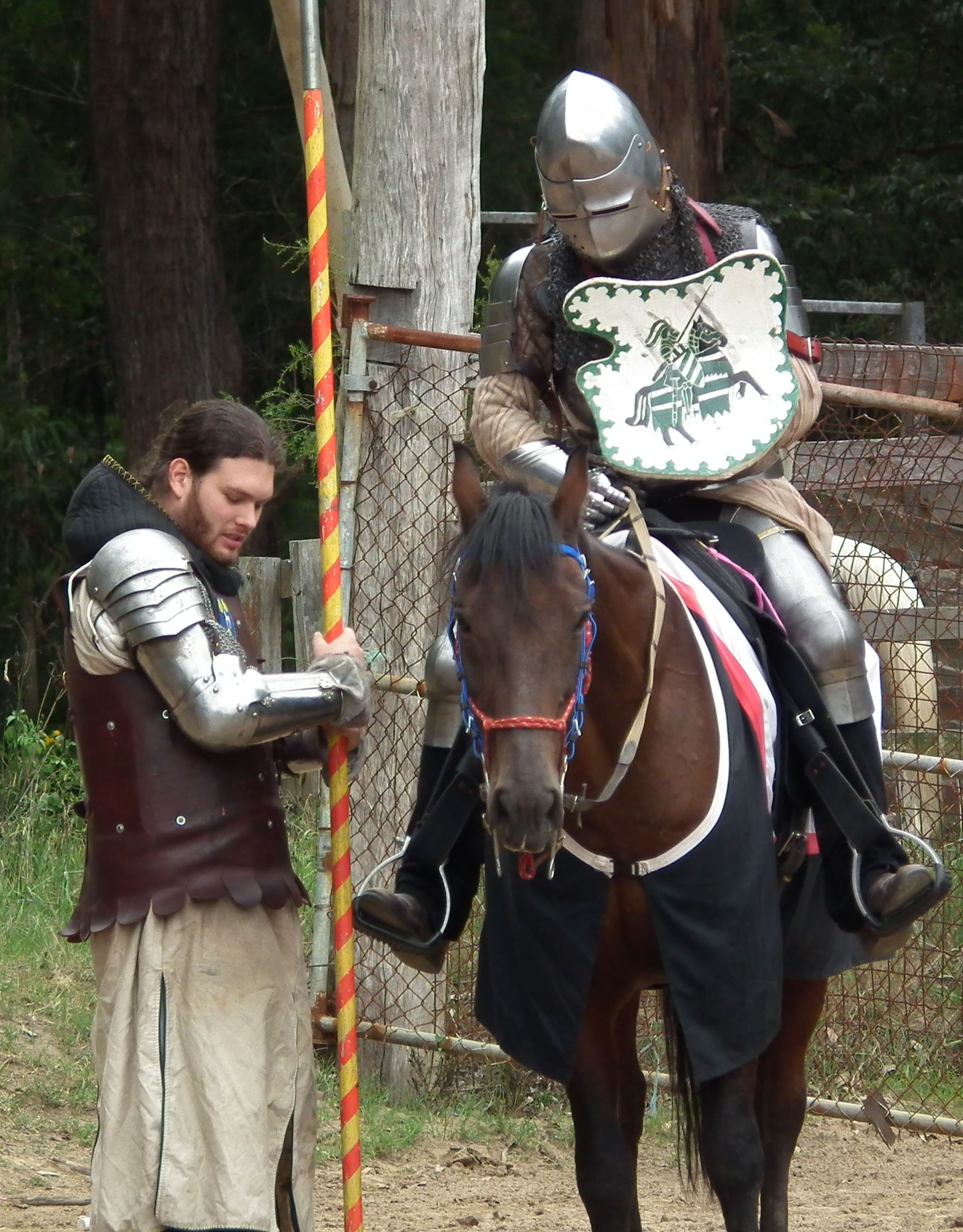 My Son the Medieval Knight | Gallery2020 Publishing