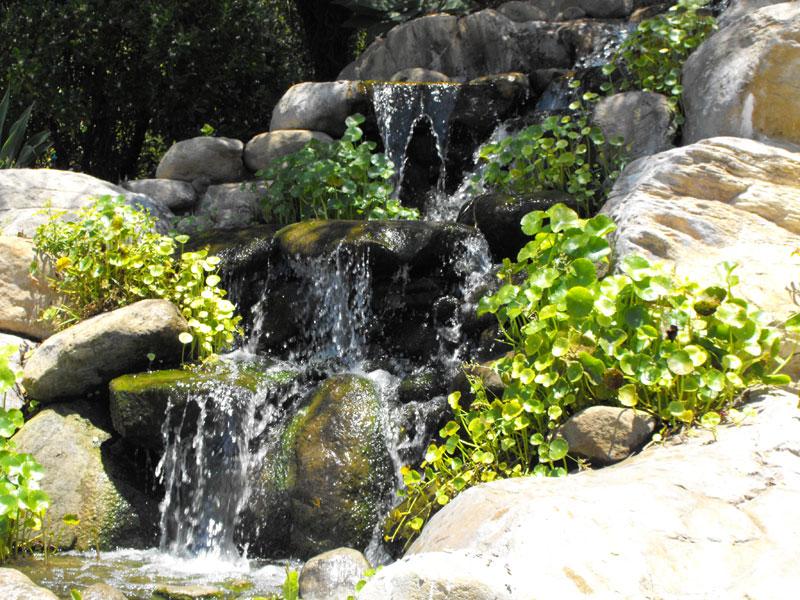 Koi Pond Rock Design