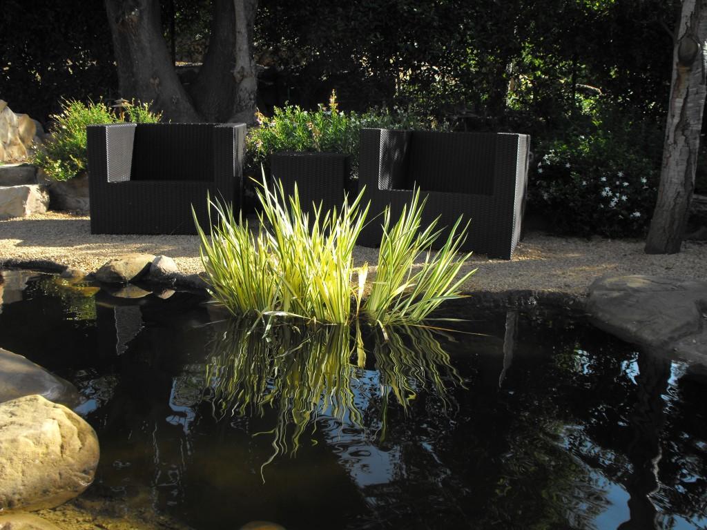 Making Pond Garden Small