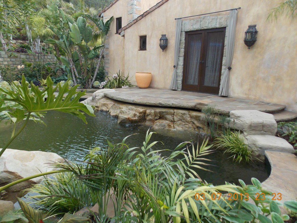 Koi Pond Design Ideas
