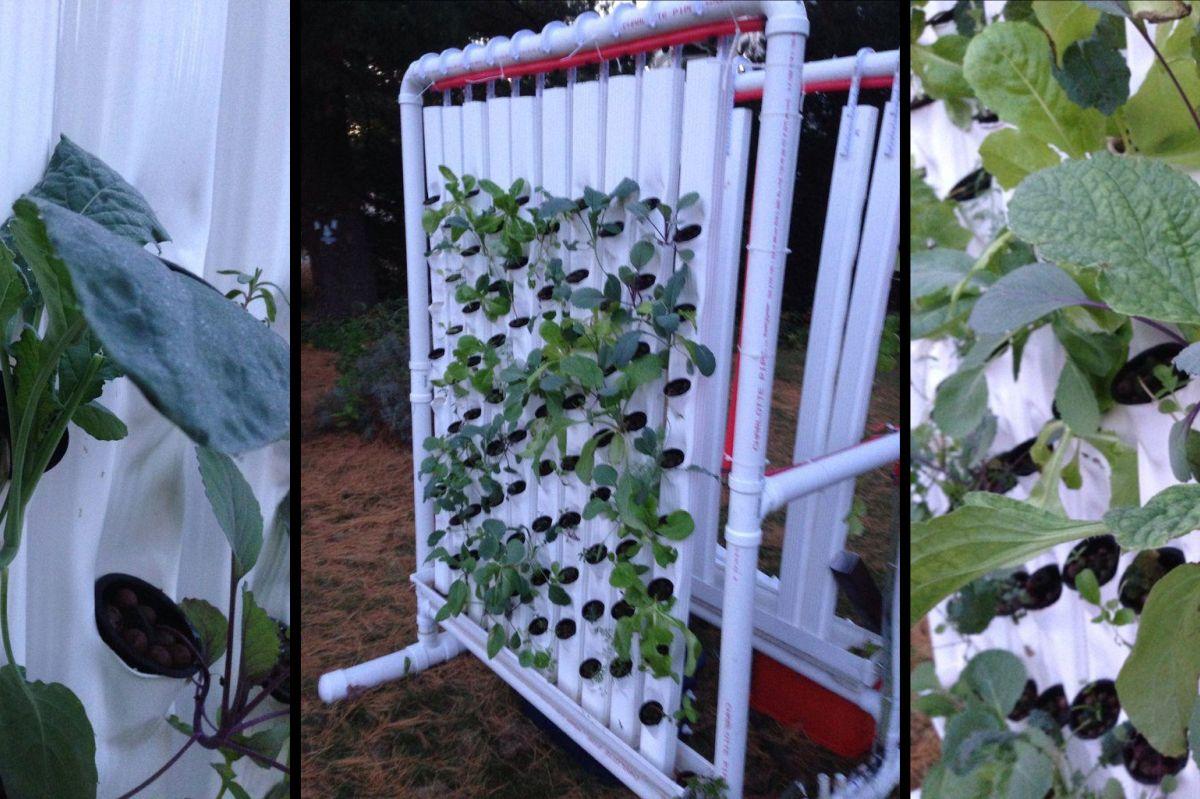 Niwa Hydroponic Grow Box