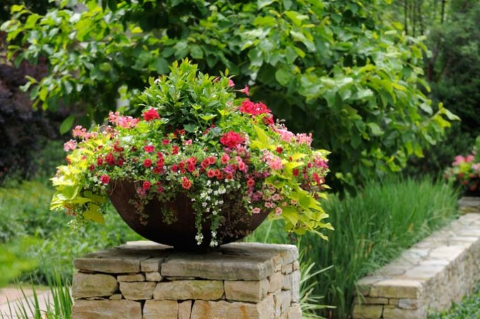 What Is the Best Material for Plant Pots  Containers  and Planters    GP Plant container on stone wall featuring geranium  million bells  and sweet  potatoe vine