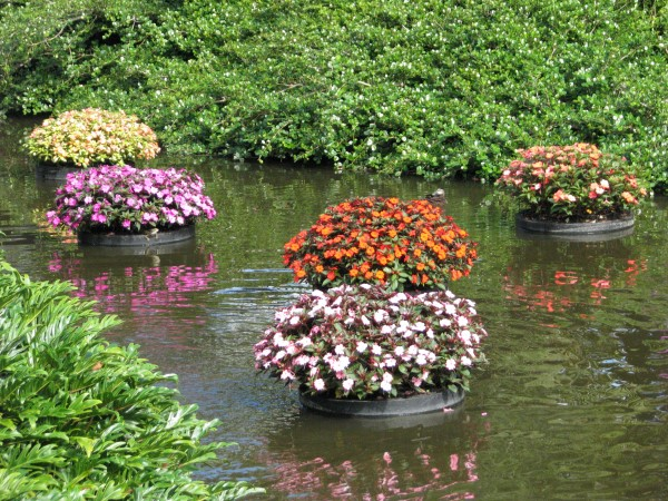 Floating Pond Planters
