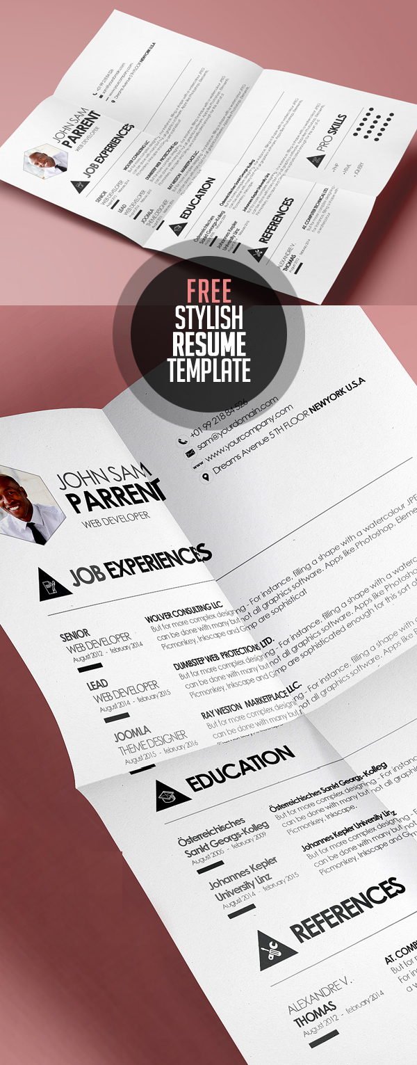 Free Downloadable Resume Template  Free Downloadable Resume     Free Resume Templates For Freebies Graphic Design Junction