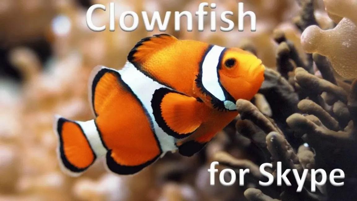 Clownfish til Skype.