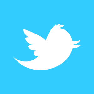 twitter_newbird_boxed_whiteonblue1